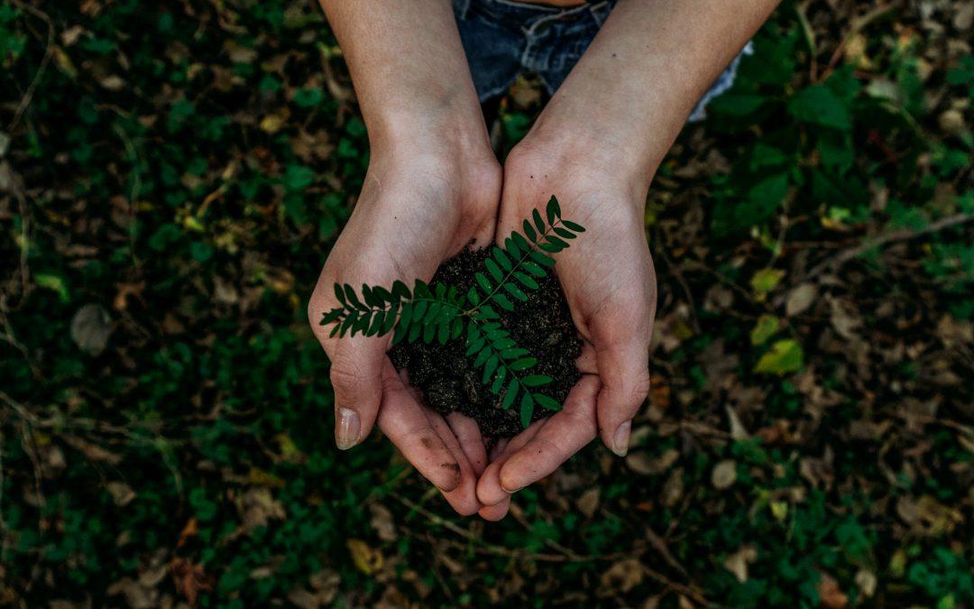 ANTARIS presenta su I Plan Medioambiental